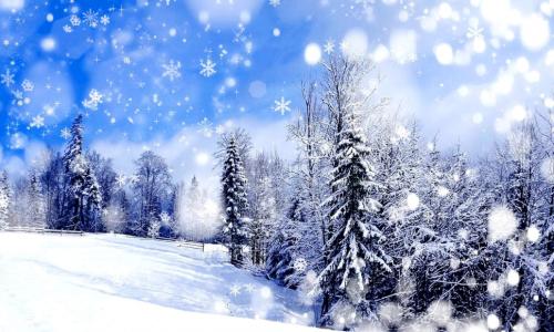 winterpic
